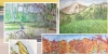 watercolor art pieces from Beauty in Nature Drawing and Watercolor Class